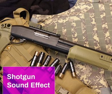 Shotgun Sound Effect