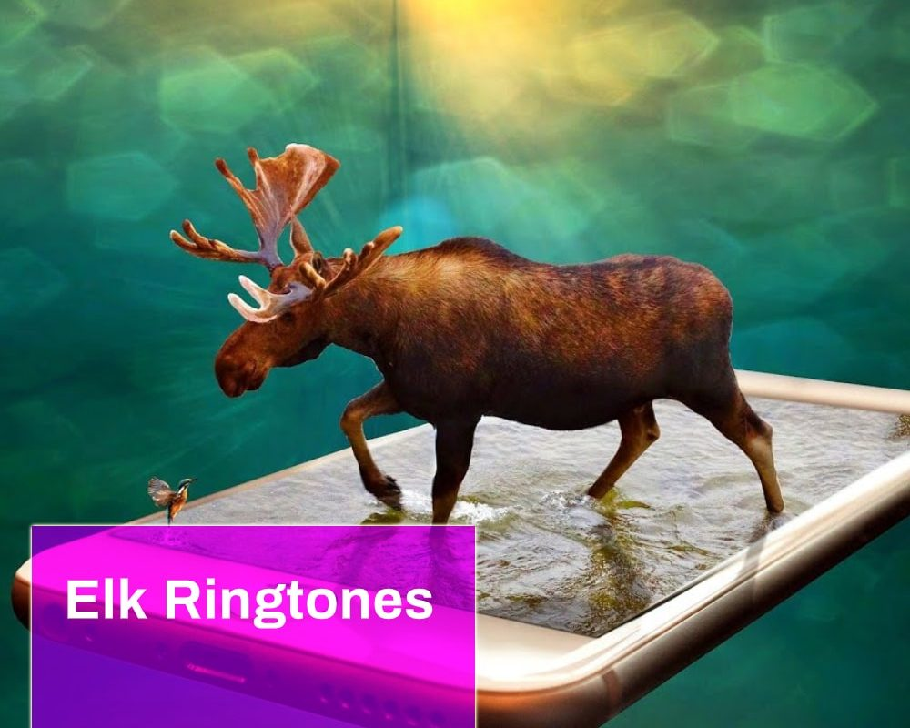 Elk Ringtones