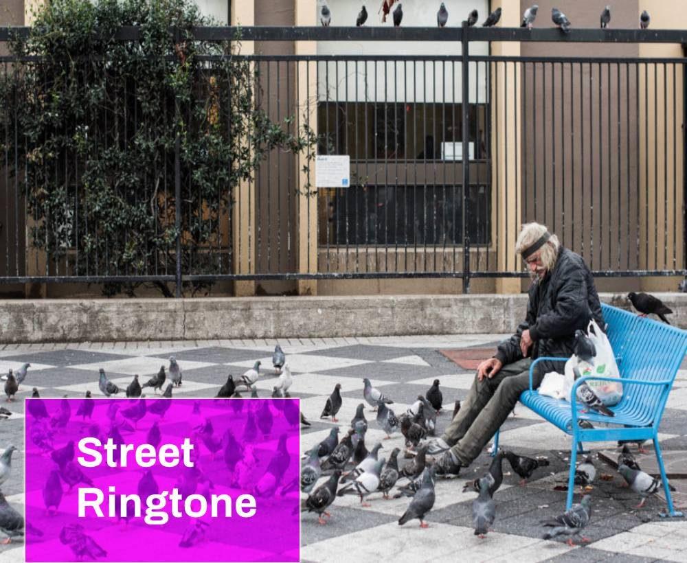 Birds on the Street