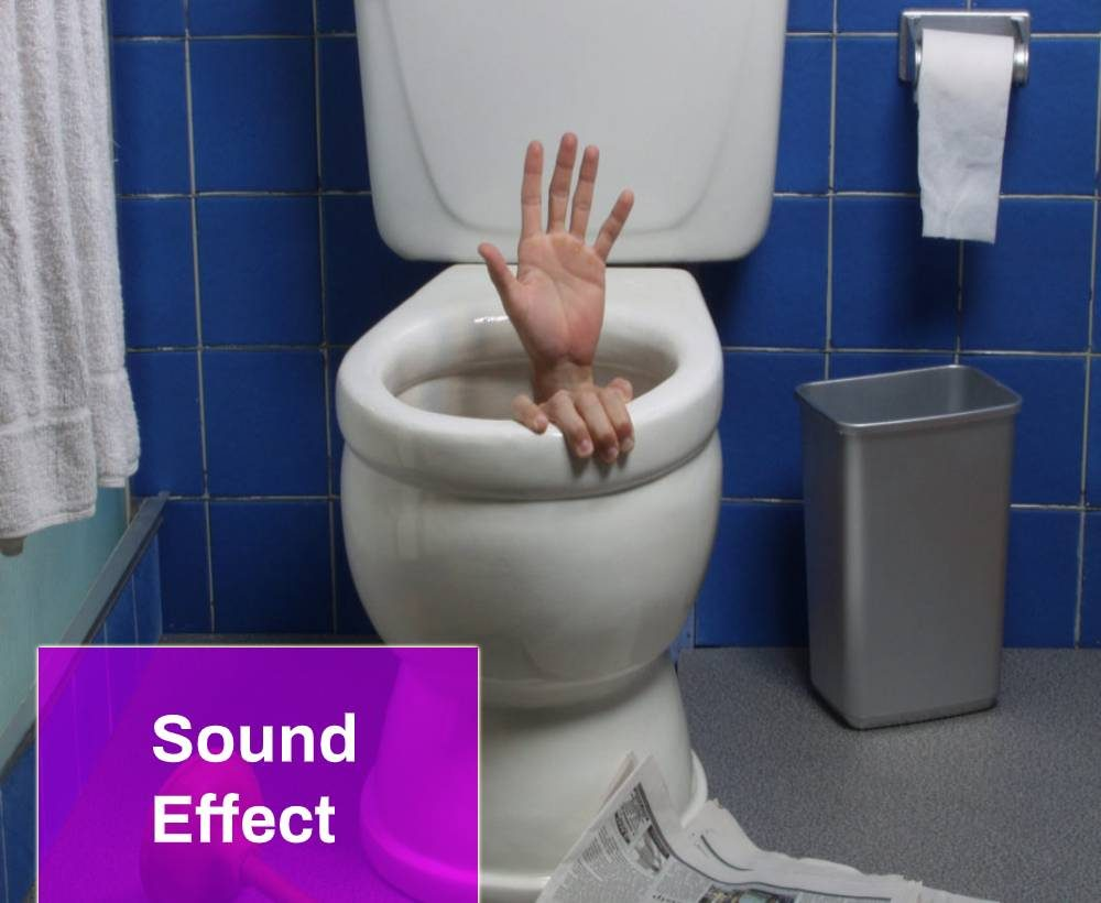 Toilet Flush Sound