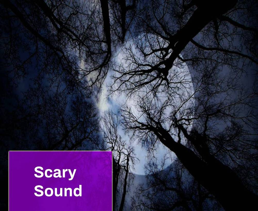 Scary Noise