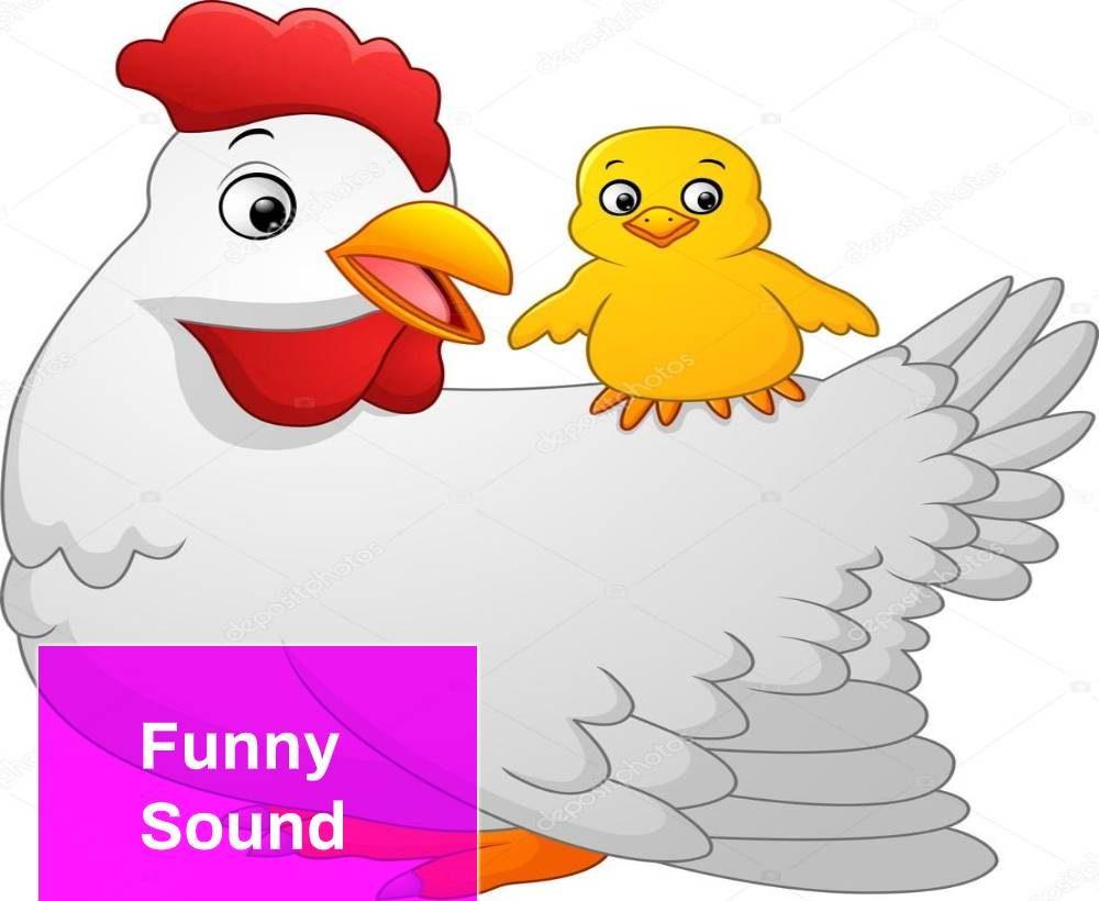 A Fun Chicken Song