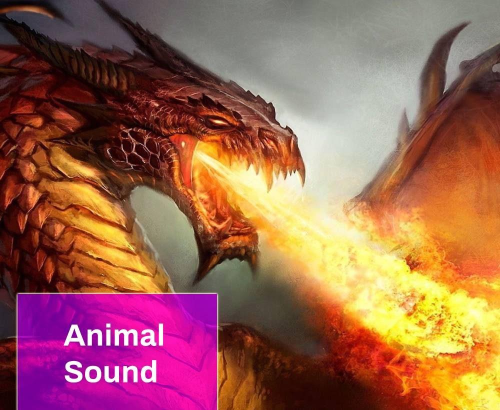 Dragon Fire Breath and Roar Sound