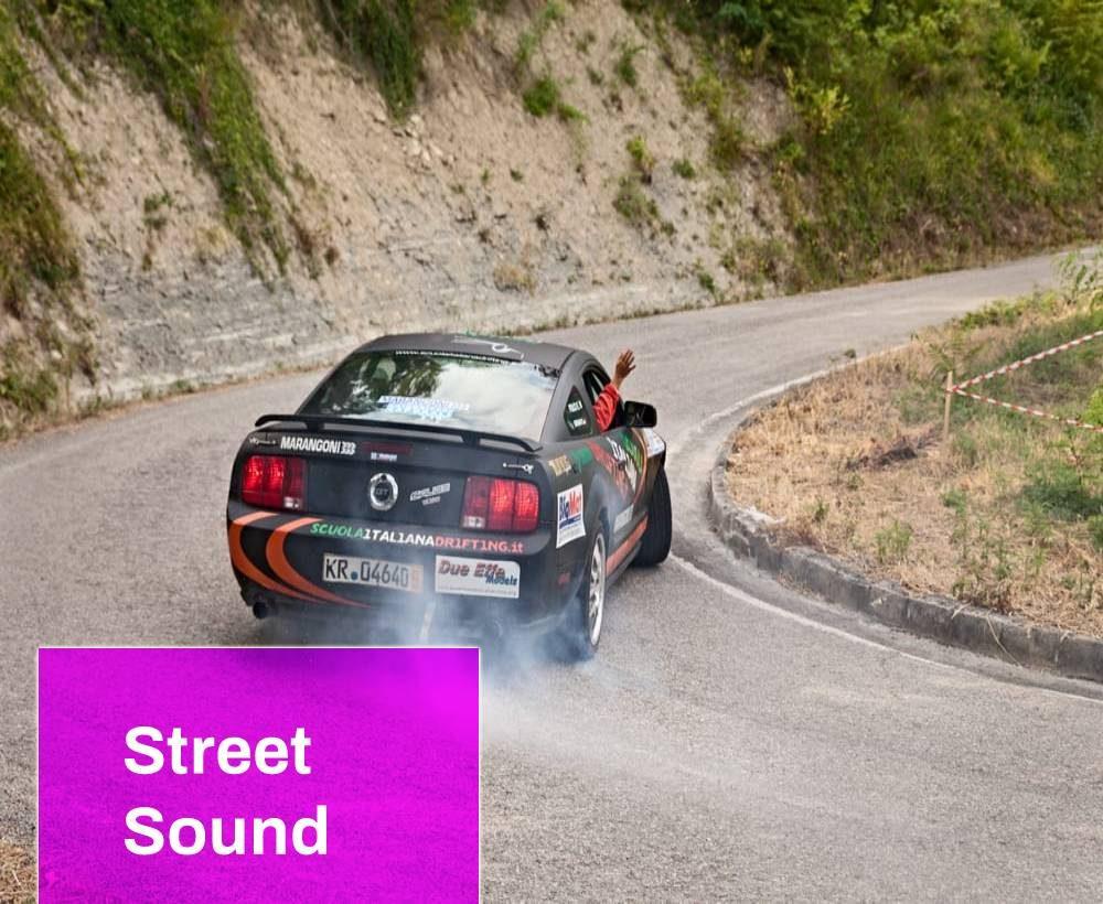 Car Skidding Sound