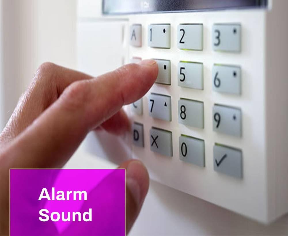 Business Alarm Sound