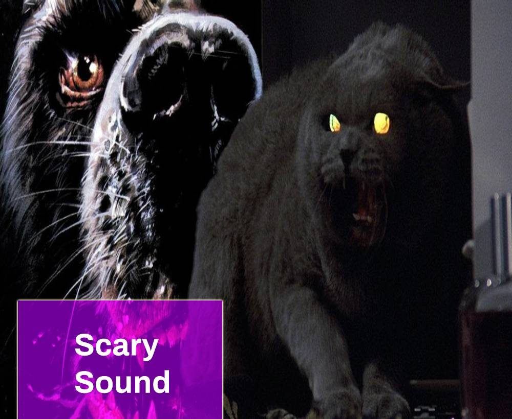 Horror Pet Sound Effect