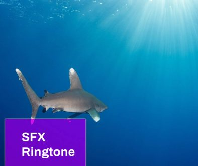 Oceanic Ringtone