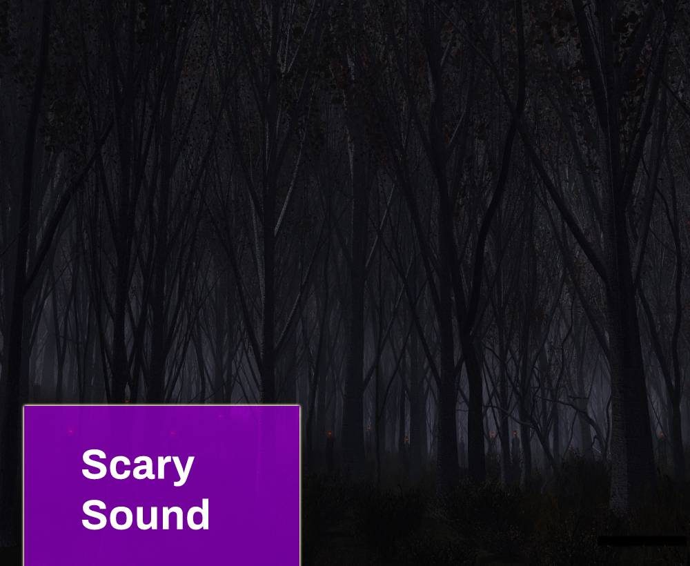 Scary Woods at Night Sound