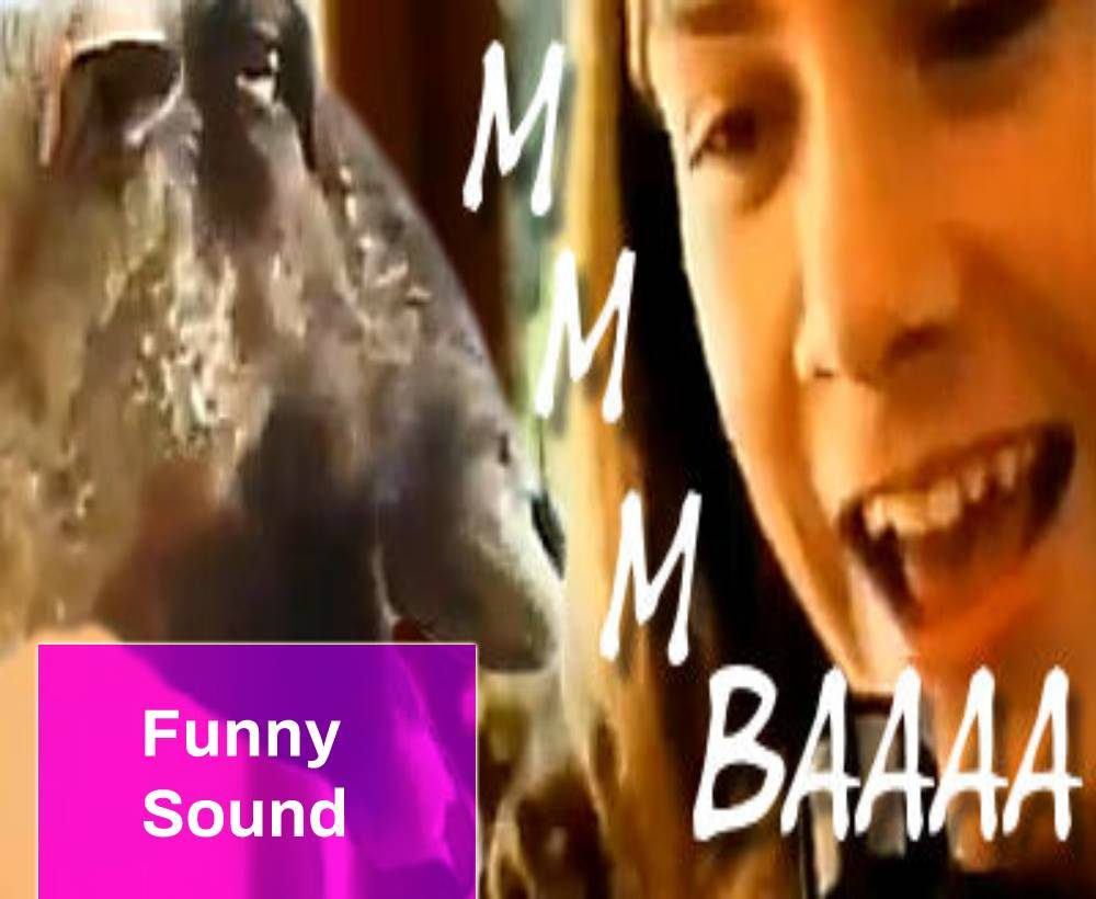 Funny Screaming Goat