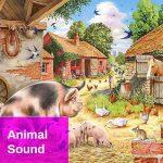 Animal Farm Country Sound