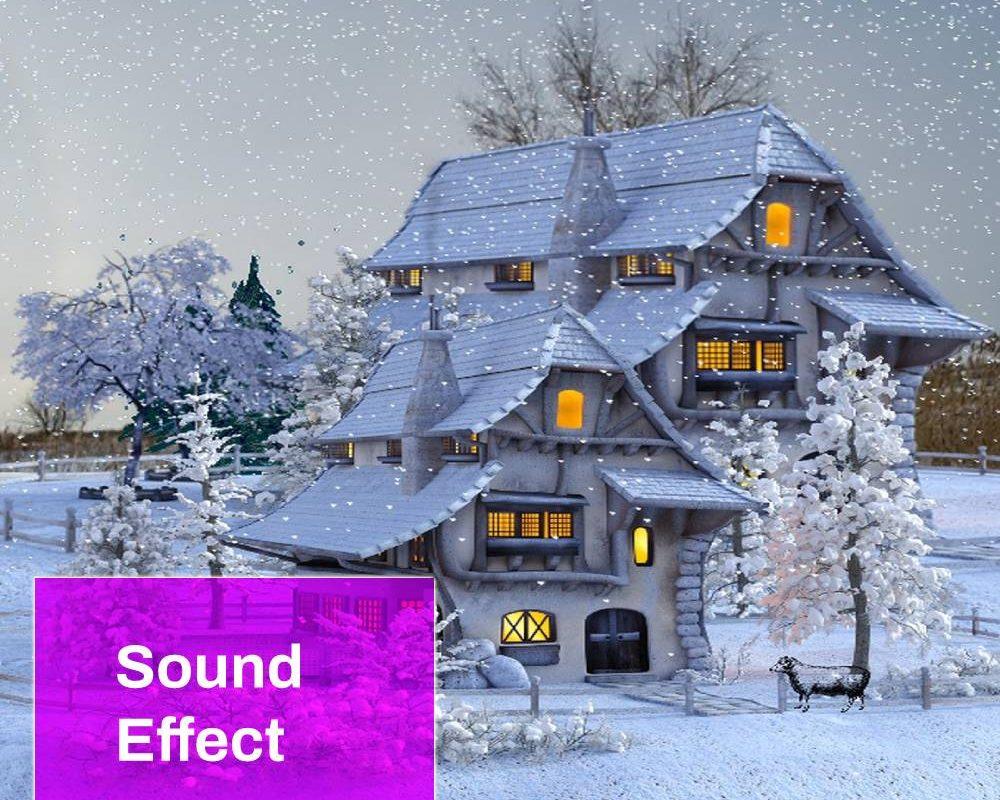 Winter House Sound