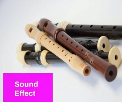 Flute Sound