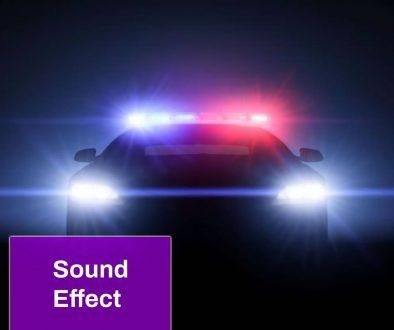 Police Remix Sound