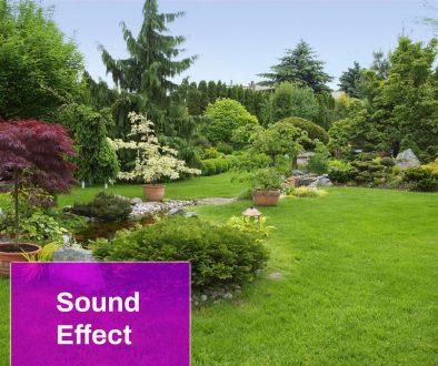Garden Sound Effect